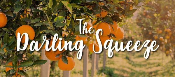 The Darling Squeeze