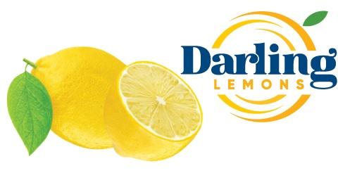 product-darling-lemons